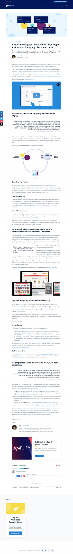 Amplitude - Blog article