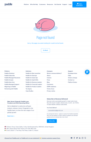 Paddle – 404 Error page